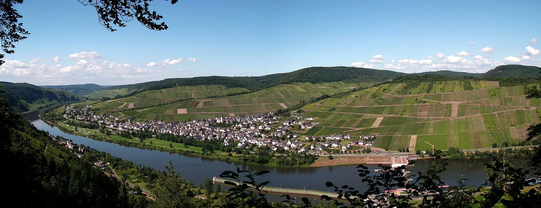 """Blick vom """"Mont Royal"""" auf Enkirch"""